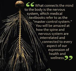 chiropractic network