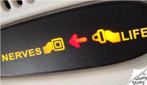 FCLC seatbelt