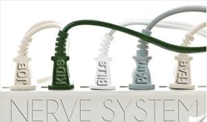 FranksChiropracticLifeCenter nerve system